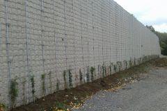 Lärmschutzwand Bepflanzung