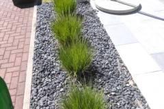 Gräser pflegen